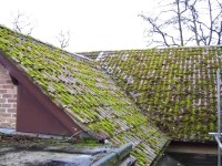 Roof before cleaning showing moss and lichen on roof and blocking gutter